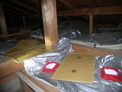 アパート ねずみ 駆除 天井 管理 賃貸 駆除をメインでするのは管理側それとも、責任はどちらに